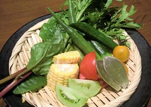 有機野菜のカゴ盛り